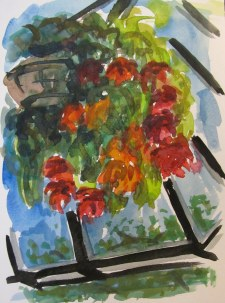 Hanging Planters, August 19, 2011, watercolour on paper