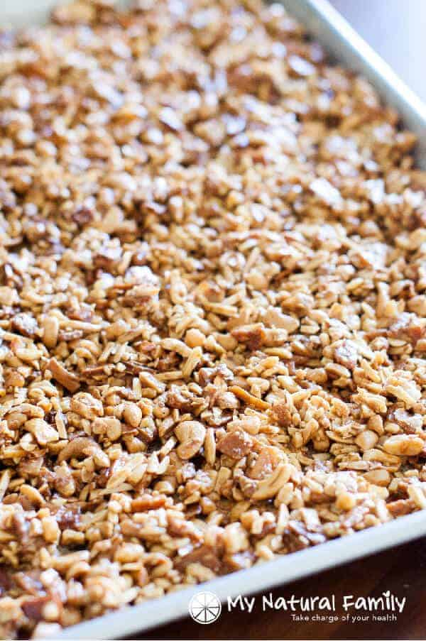 Honey Roasted Tropical Paleo Granola Recipe
