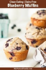 The Best Whole Wheat Oatmeal Blueberry Muffins