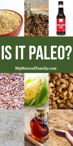 Is it Paleo? Answers to common questions about questionable ingredients and if they are Paleo or not.