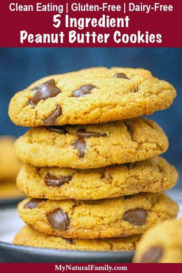 5 Ingredient Peanut Butter Cookies with Chocolate Chips {Clean Eating, Gluten-Free, Dairy-Free}