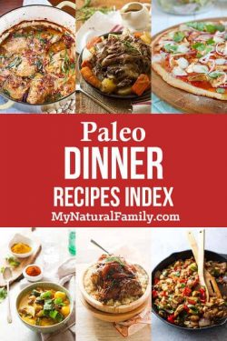 Paleo Dinner Recipes Index