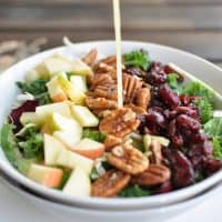 Cranberry Apple Pecan Salad Recipe