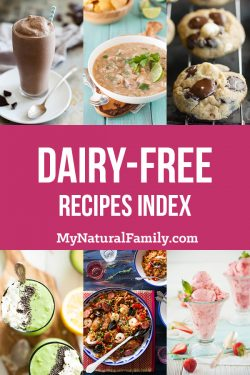 Dairy-Free Recipe Index