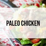 paleo chicken recipes