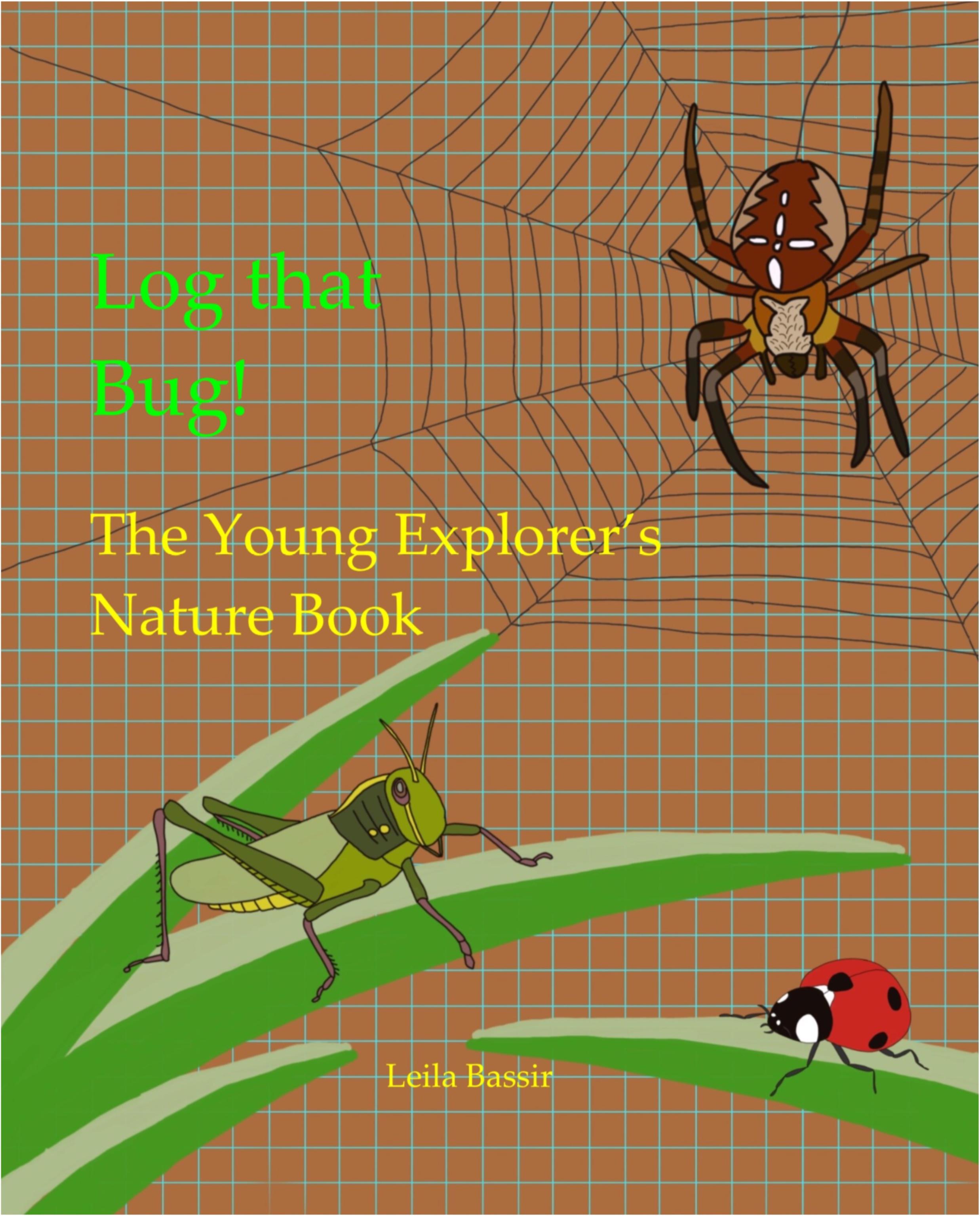 Spider, ladybird, grasshopper
