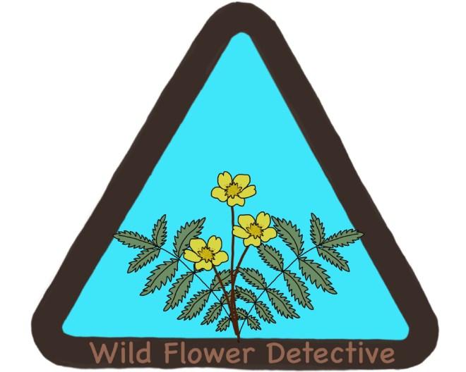 wild flower detectives badge