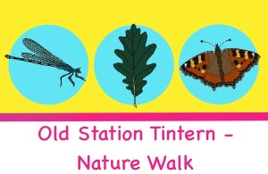 old station tintern nature walk