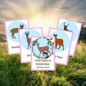 British Deer ID Cards