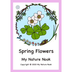spring flowers flash cards