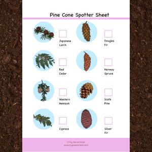 pine cone scavenger hunt