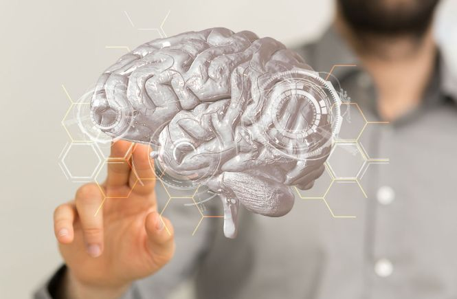 Best Brain Vitamins