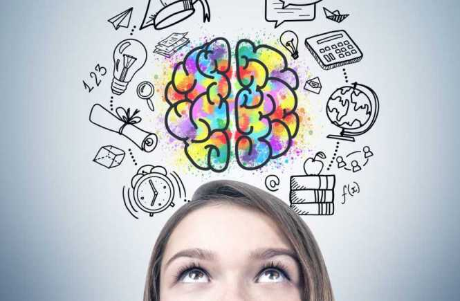 Brain Fitness Tests – What are They and Why are They Important