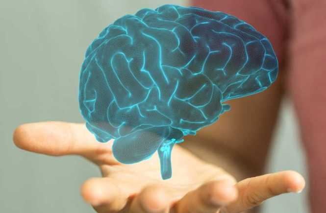 Brain Training – What is it and How do you do it