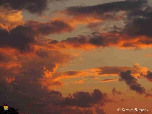 Sunset206