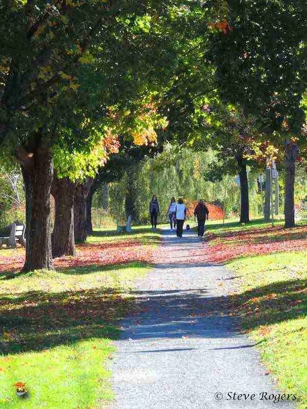 Walking trail along the Fredericton Green