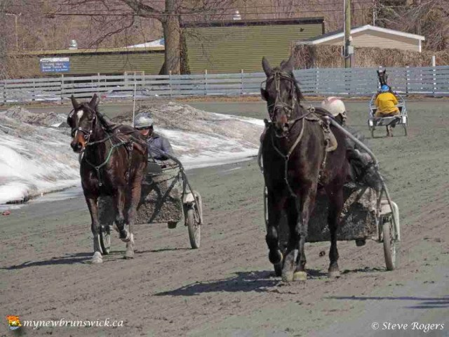 Race track 06