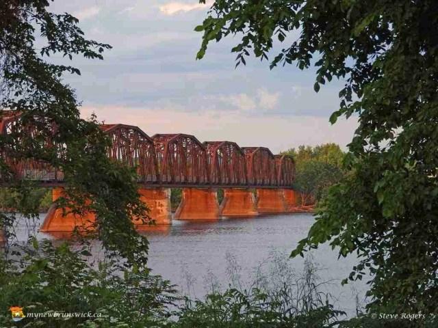 Bill Thorpe Walking Bridge 275