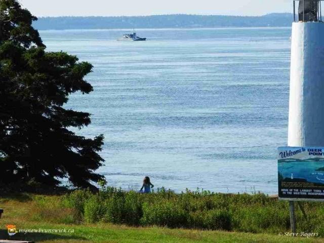 Deer Island July 15 0420