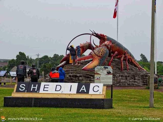 shediac_lobster