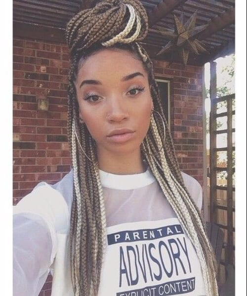 blonde and brown senegalese twist