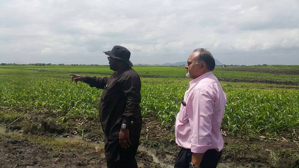 PHOTOS:Former minister 'abandons' politics for farming