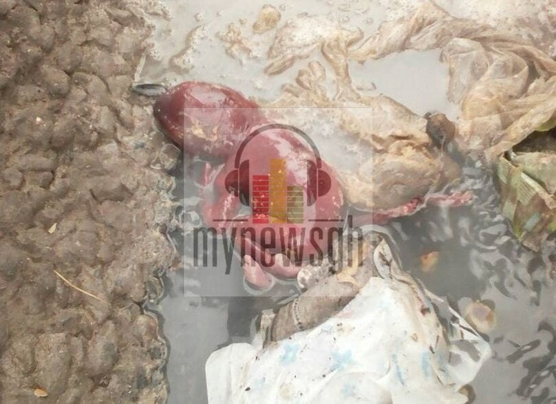 Baby girl aborted into drain at Tema