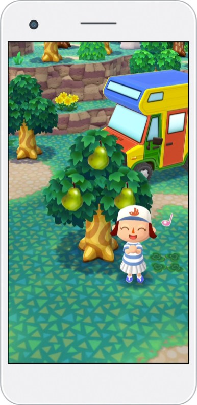 Collect all sorts of fruit in Pocket Camp.