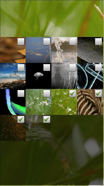 screenshot_background_selection