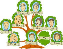 Understanding family structure