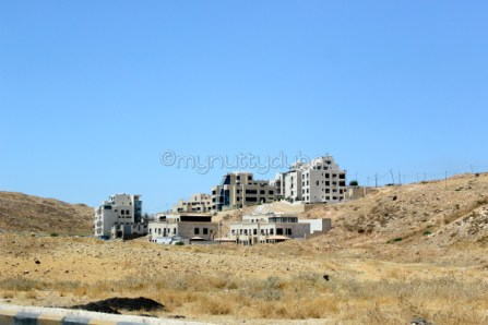 Love the typical Jordanian housing on the mountains
