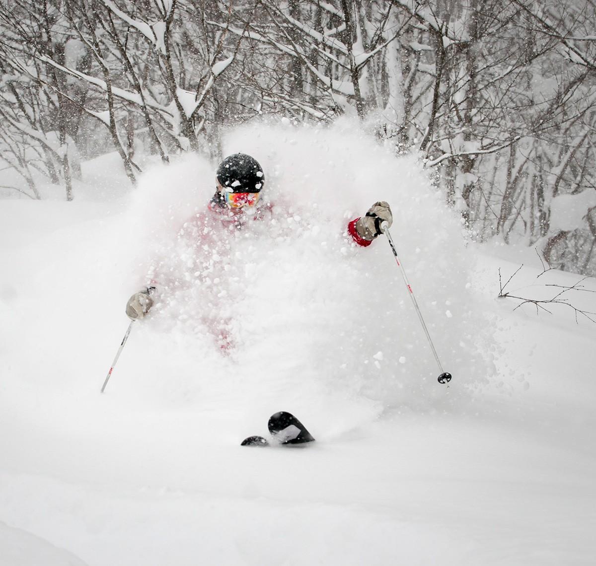 SSS-Level-1200w-x-1140h Adult (15+) Group Ski & Snowboard Programs