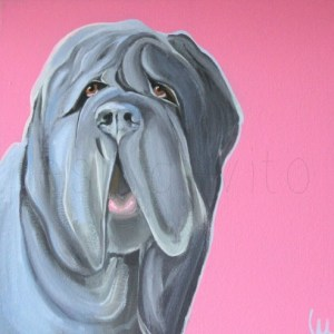 NEOPOLITAIN MASTIFF