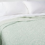 THRESHOLD MINT MEDALLION QUILT