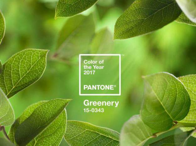 PANTONE 2017 COLOR OF THE YEAR - GREENERY. (forbes.com)