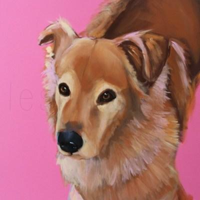 MARLOWE - AMELIE'S DOG