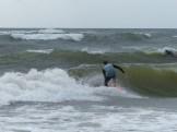 ESA Surf contest 1-1-12_1112