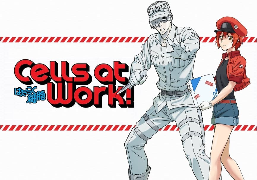 Cells at work Manga Released