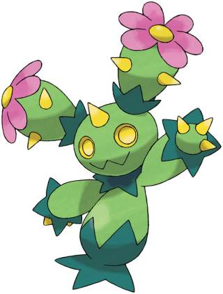 Maractus