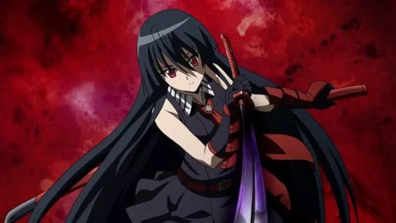 Akame From Akame ga Kill!