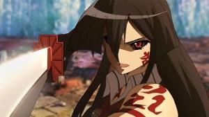 Assassin Anime