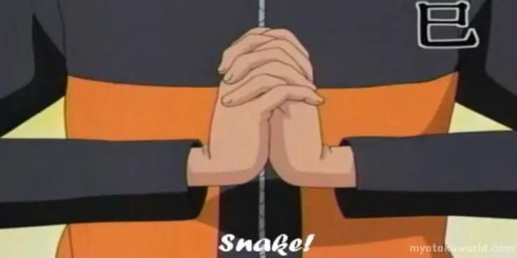 naruto Snake hand sign