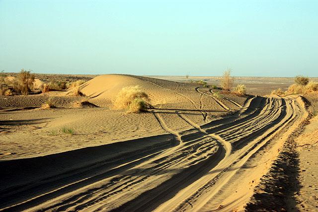 Desert sand track