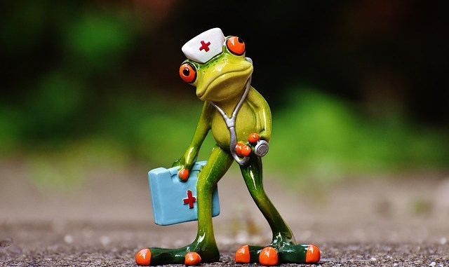 Doctor Frog Looking Sweet