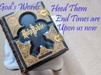 God's Words 3392763192067