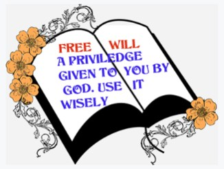 Free will 90867452319