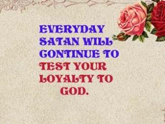 Loyal 73186089192089