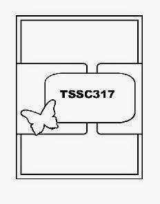 TSSC317