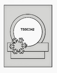 TSCC342