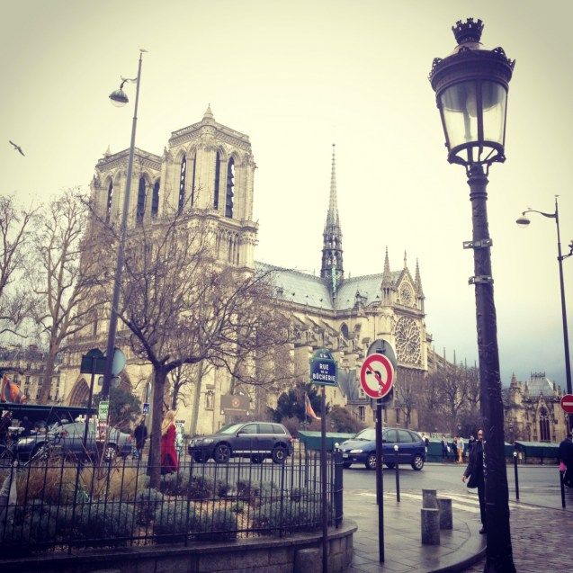 The view of Notre Dame from Shakespeare and Co. Paris